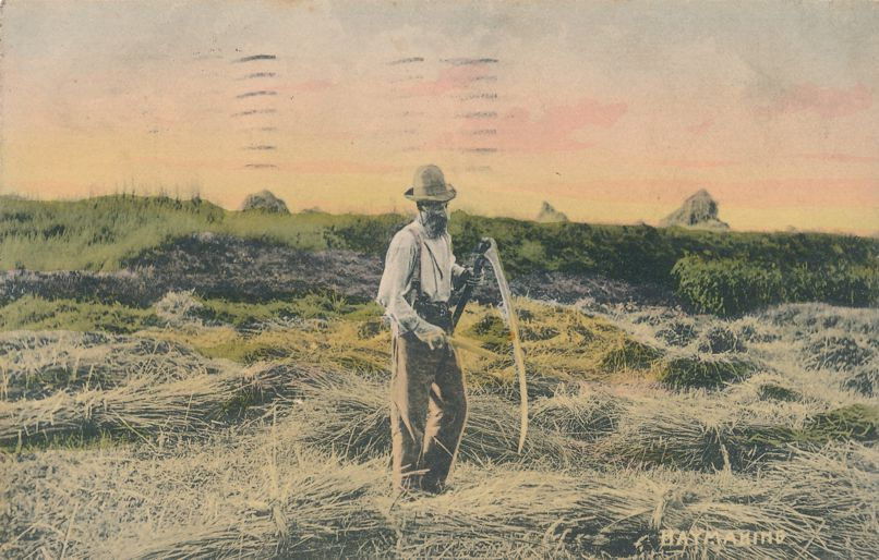 Farmer with Scythe Haymaking - Hay Making - Agriculture - Mailed in New York - pm 1908 at New York City - Divided Back