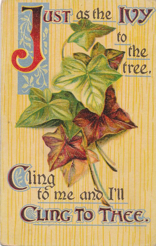 Just as Ivy to the tree, Cling to Me and I'll Cling to Thee - pm 1910 at Canaseraga NY - Divided Back