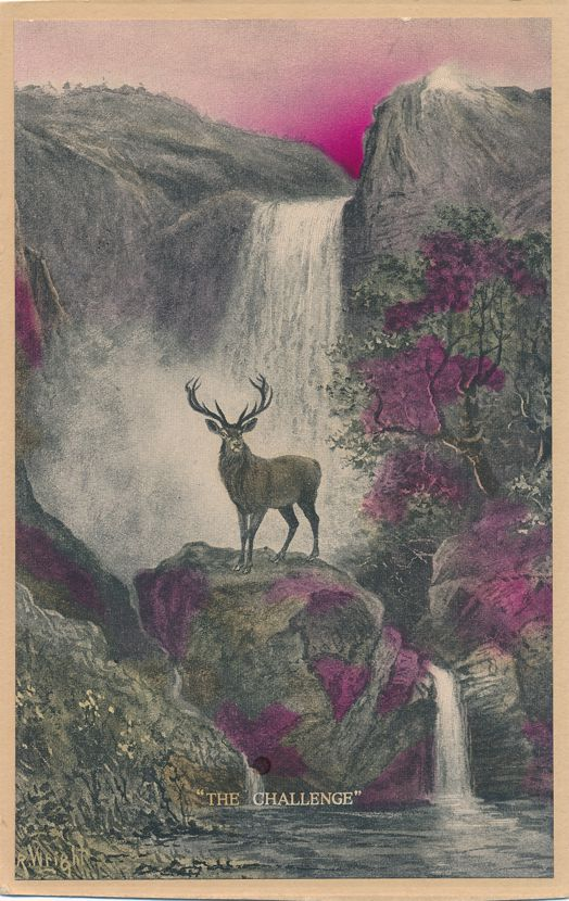 The Challenge - Deer on Rock near Waterfall - a/s R Wright - Animal