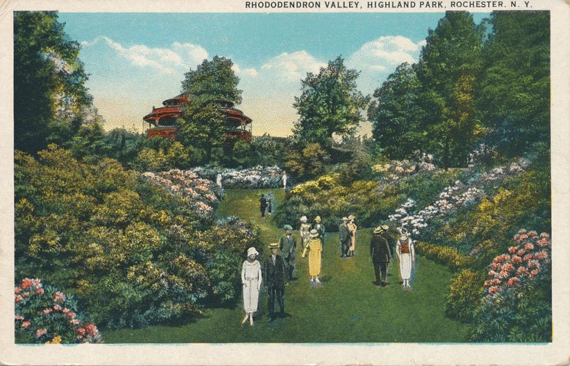 Crowd at Rhododendron Valley - Highland Park, Rochester, New York - White Border