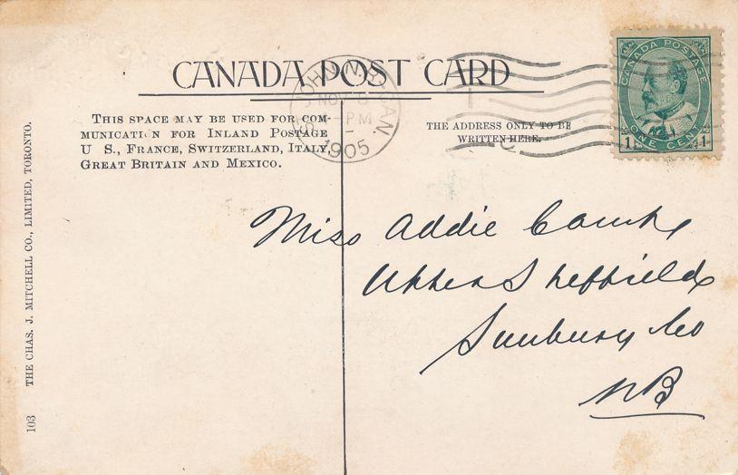 Souvenir Multiview Postcard of Saint John, New Brunswick, Canada - pm 1905 - Undivided Back