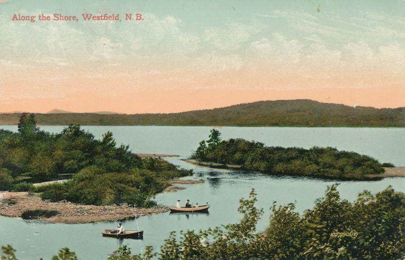 Rowboats along the Saint John River - Westfield, New Brunswick, Canada - pm 1910 at Frederickton NB - Divided Back