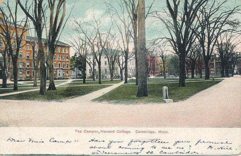 The Campus at Harvard College - Cambridge, Massachusetts - pm 1909 - Undivided Back