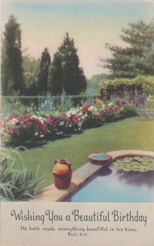 Wishing You a Beautiful Birthday Greetings - Garden View - Divided Back