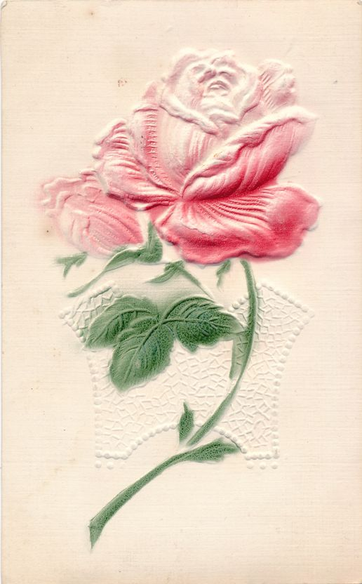 Beautiful Rose Flower Greetings - High Relief - pm 1908 at Ansonia PA - Divided Back