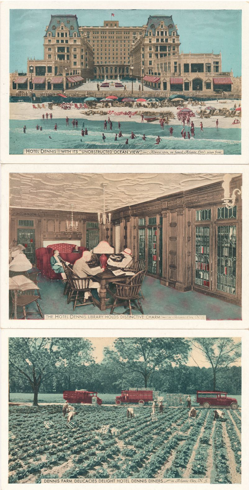 (3 cards) Hotel Dennis, Atlantic City, New Jersey - Waterfront, Library, Vegetable Farm - White Border