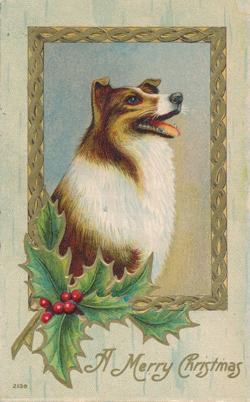 Christmas Greetings from the Dog - Collie - pm 1909 at Rochester NY - Divided Back