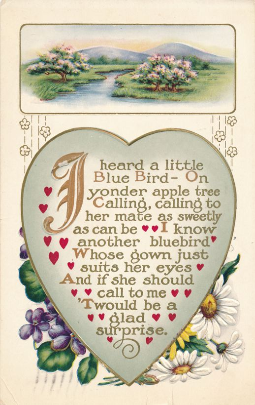 Valentine Greetings - I Heard Blue Bird calling on Apple Tree - pm 1913 at Bradford PA - Divided Back