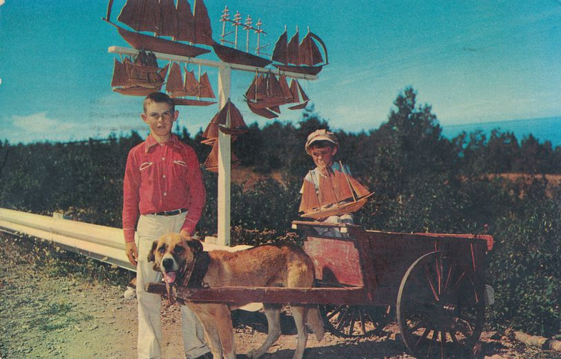 Children with Dog and Cart - Gaspe Nord, Quebec, Canada - pm 1965 at Rimouski
