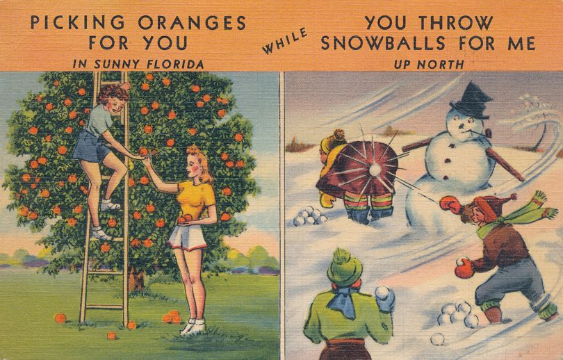 Picking Oranges in Florida - Throwing Snowballs up North - pm 1942 at Melbourne FL - Linen Card