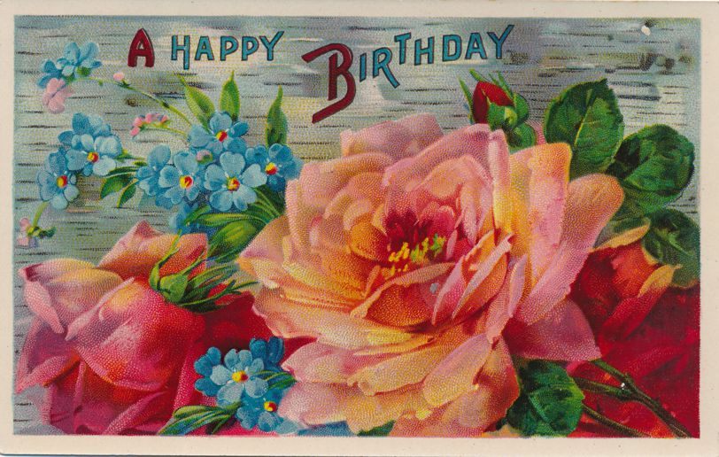 Happy Birthday Greetings - Beautiful Rose - Divided Back