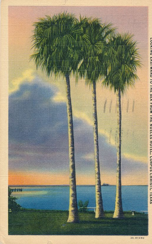 Looking at Sea to East from Nueces Hotel - Corpus Christi, Texas - pm 1940 - Linen Card