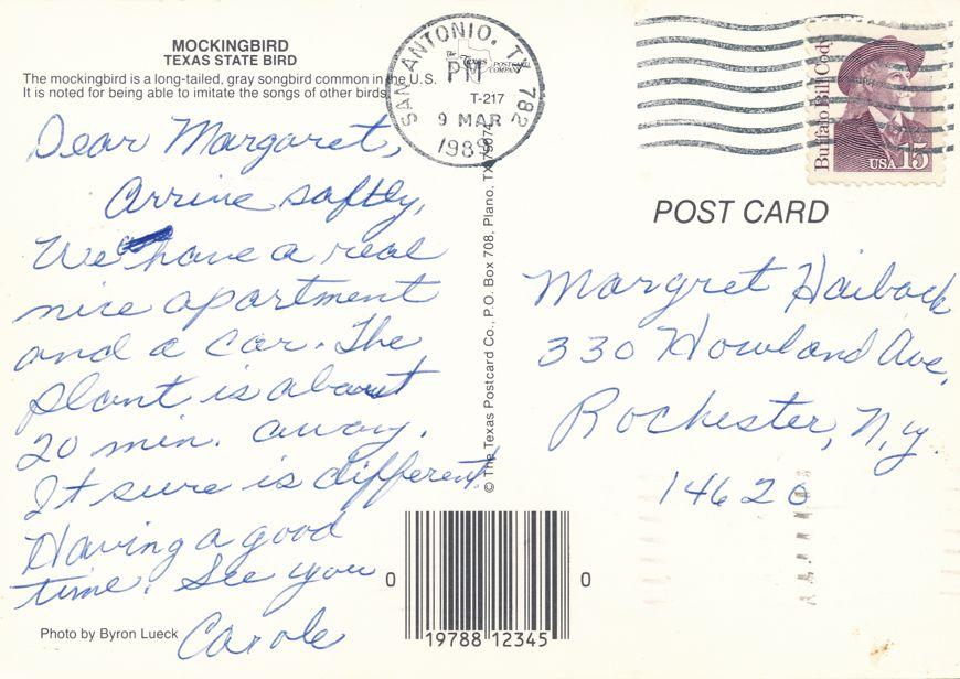 Mockingbird - State Bird of Texas - pm 1989 at San Antonio