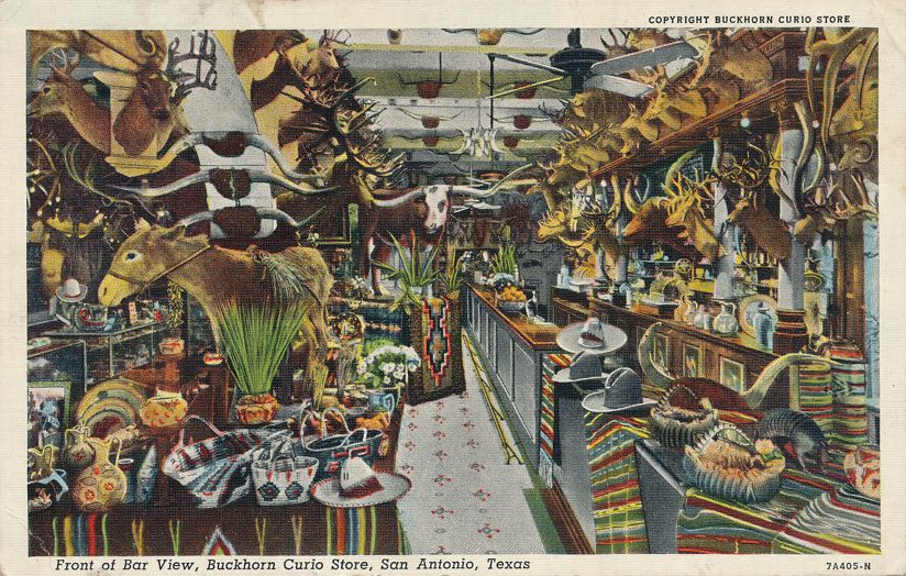 San Antonio, Texas - The Buckhorn Curio Store - pm 1942 - Linen Card