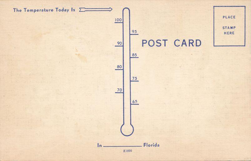 It is Fun To Sun in Florida - Palm Trees Sandy Beach - Linen Card