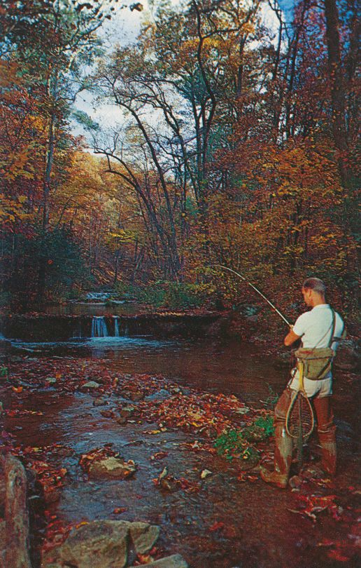 Hot Springs, Virginia - The Homestead Resort - Cascades Trout Stream Fishing