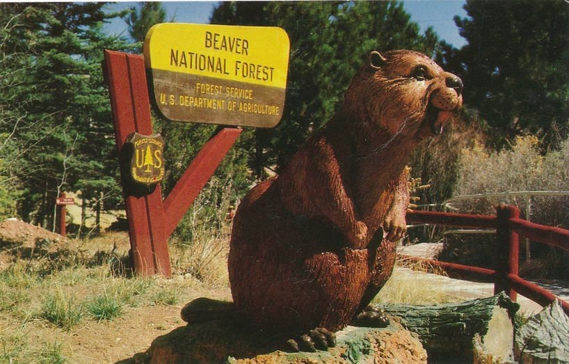 Beaver Statue at Beaver National Forest - Ghost Ranch near Abiquiu, New Mexico