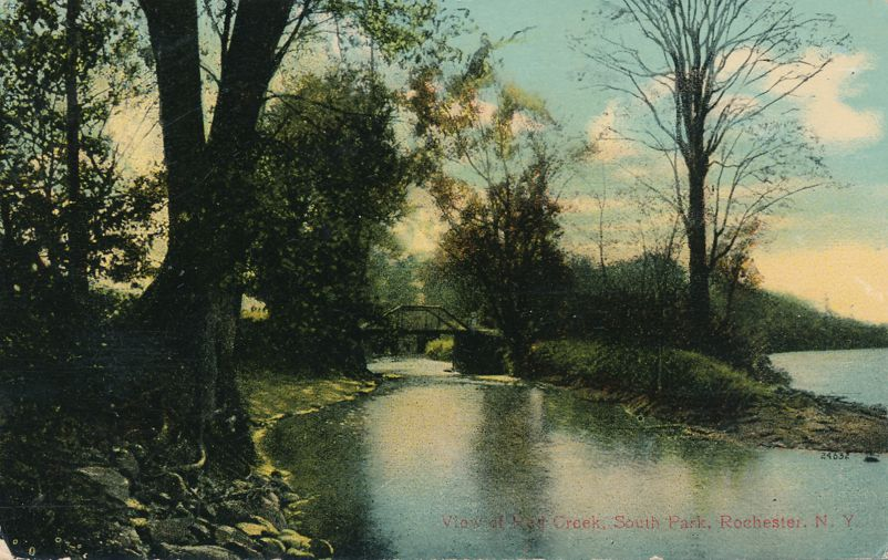 Rochester, New York - Red Creek at South Park (Genesee Valley Park) - Divided Back