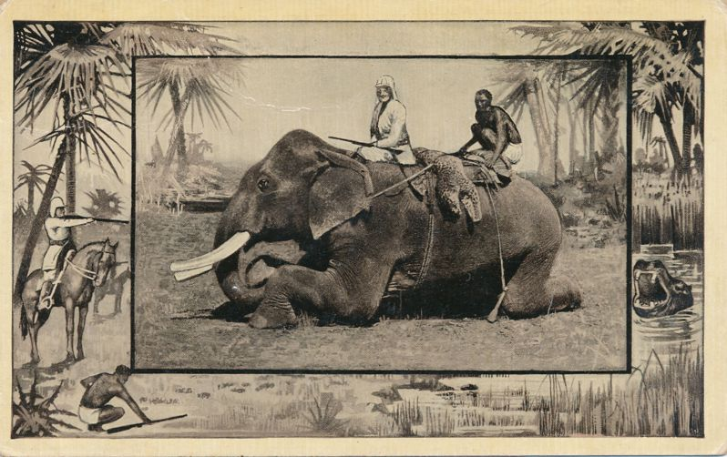 Africa Safari 1909 Series by Mintz of Chicago - Hunting from Elephant - Divided Back