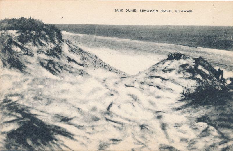 Rehoboth Beach, Delaware - Sand Dunes