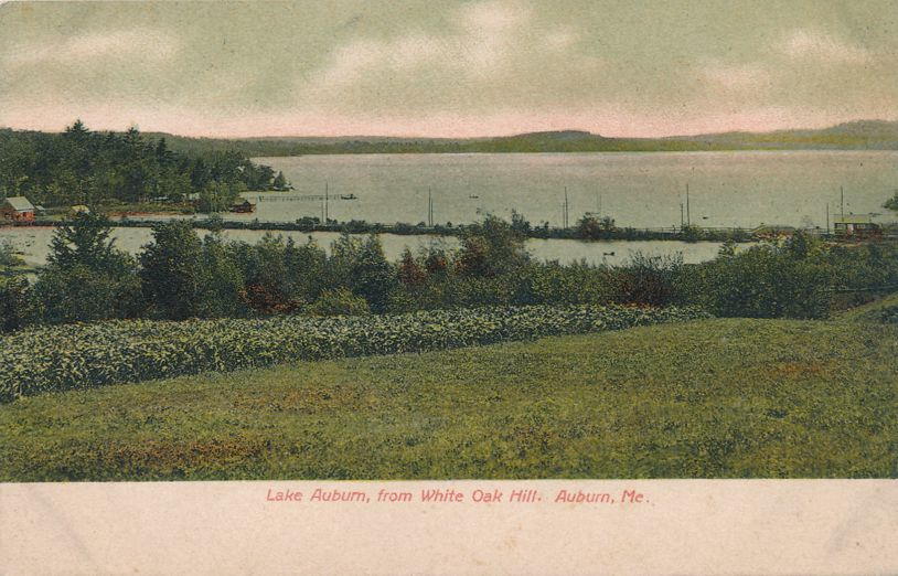 Lake Auburn from White Oak Hill - Auburn, Maine - Undivided Back