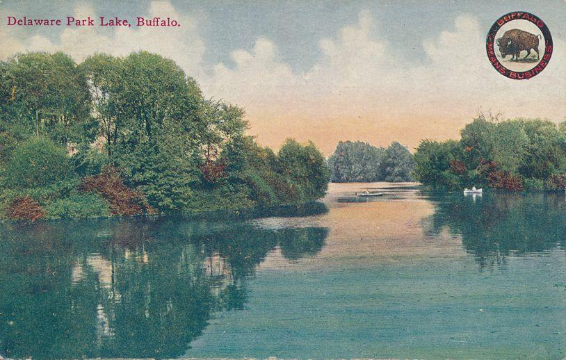Buffalo, New York - Lake Scene in Delaware Park - Divided Back
