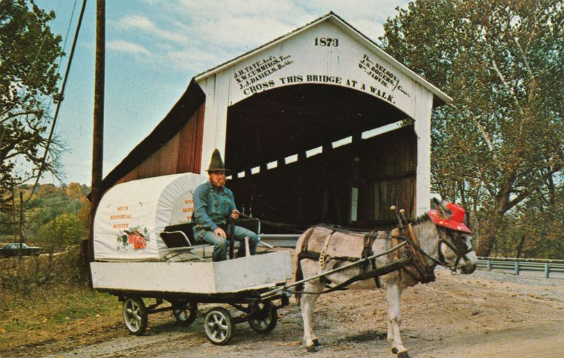Bill Capps and Mule at Pioneer Days - Parke County, Indiana Covered Bridge