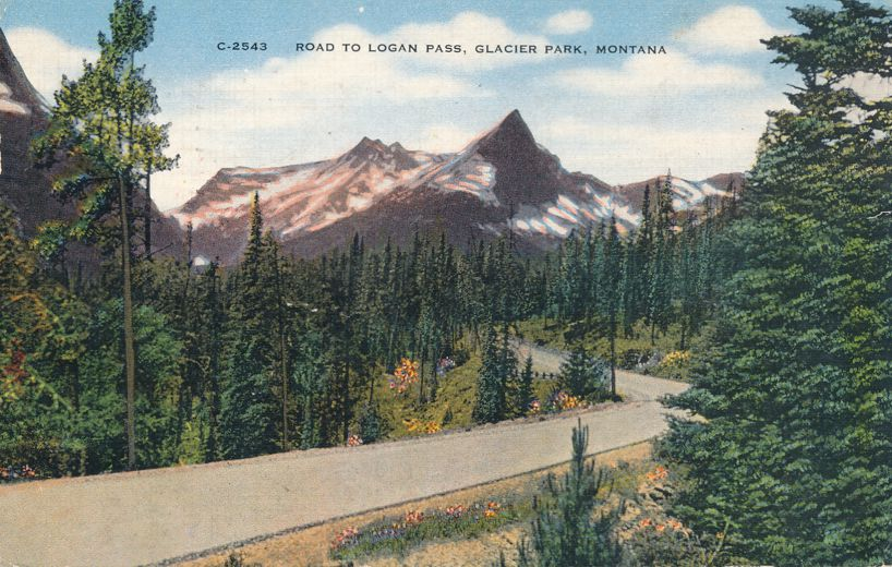 Glacier National Park, Montana - Road to Logan Pass along McDoanald River - pm 1945 at Livingston MT - Linen Card