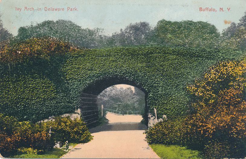 Buffalo, New York - Ivy Arch on Bridge in Delaware Park - pm 1909 - Divided Back