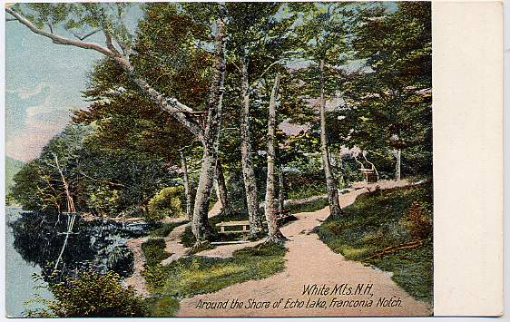 Around the Shore of Echo Lake, White Mountains, Franconia Notch, New Hampshire - Divided Back