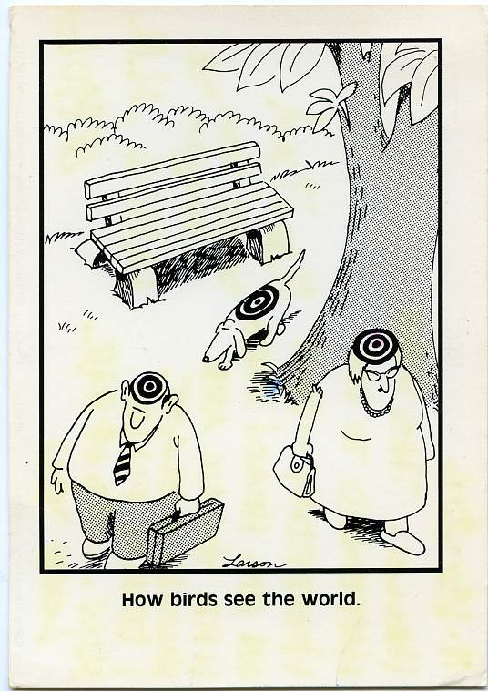 How Birds See the World, Humor - Cartoon - pm 1986