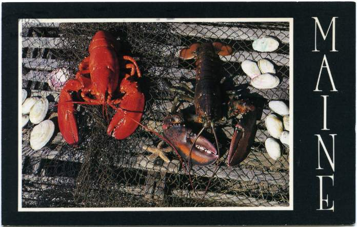 Maine Lobsters - pm 1986 at Bangor, Maine