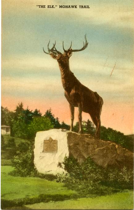 The Elk on the Mohawk Trail - Overlooking the Deerfield River Valley, Massachusetts - Divided Back