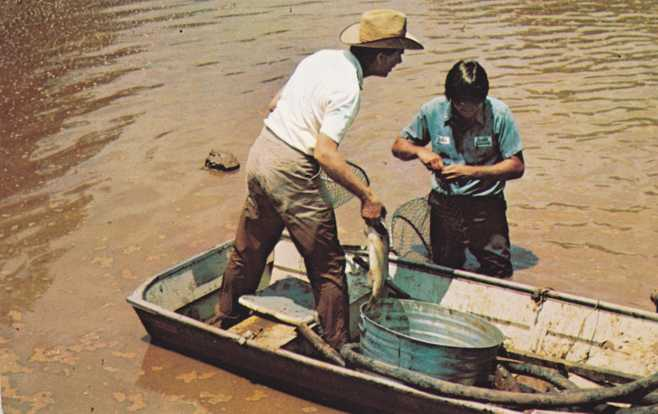 The Fishing's Good in Miss Lillian's Pond - for Jimmy Carter - Plains, Georgia