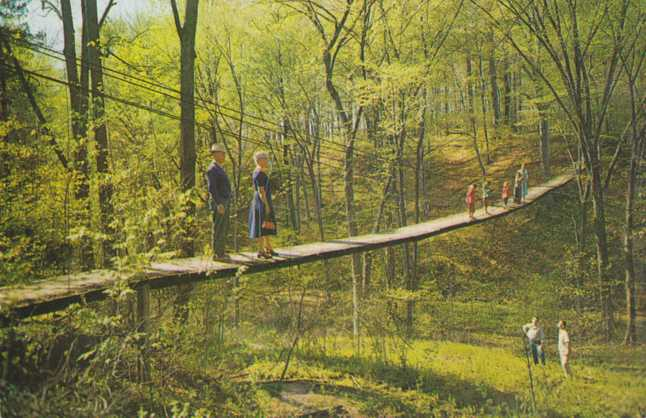 Swinging Bridge of Sighs - Pennellwood Resort, Berrien Springs, Michigan