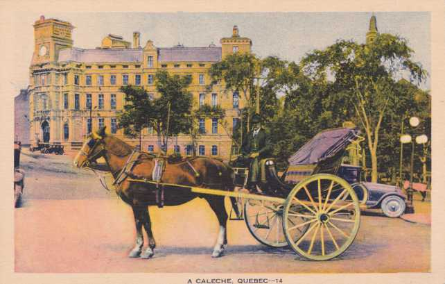Caleche - Horse and Carriage - Popular with Tourists in Old Quebec - Quebec, Canada
