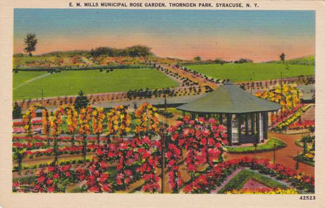 E. M. Mills Municipal Rose Gardens - Thornden Park, Syracuse, New York - Linen Card