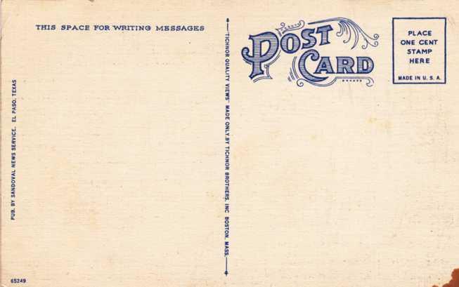 Buzzard - Vulture - Scavenger of Texas and the Southwest - Linen Card