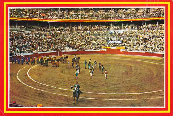 Bull Fighting Ring -
