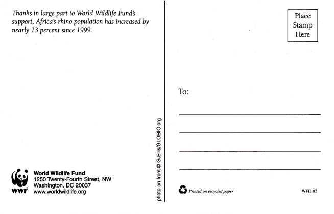 African Rhino - Rhinoceros - WWF - World Wildlife Fund