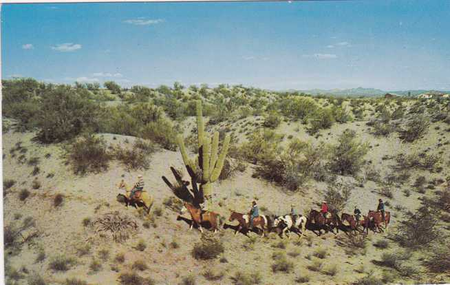 Horseback Riding on Arizona Desert Trails