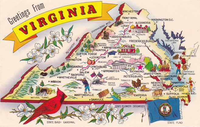 Greetings From Virginia - Map - State Bird Cardinal - Flag