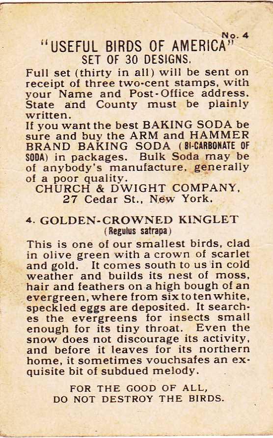 Golden Crowned Kinglet, Trade Card - Arm & Hammer