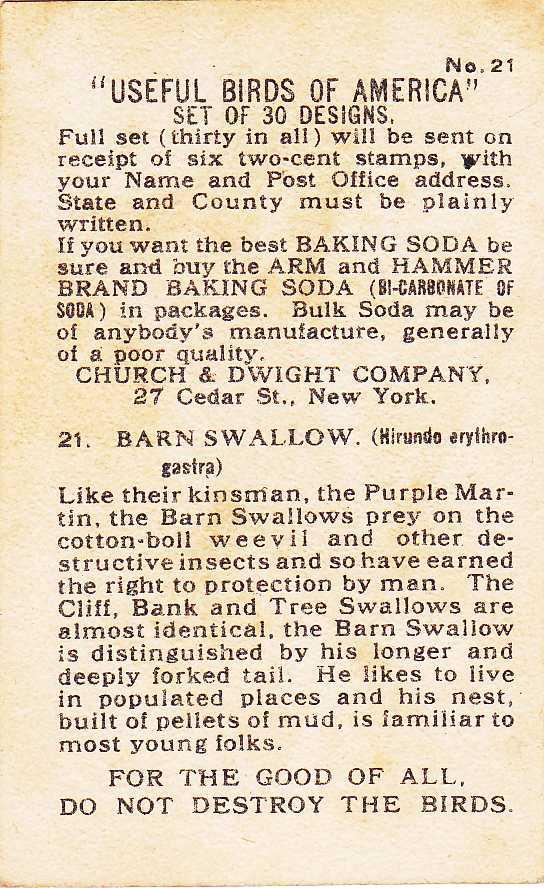 Arm & Hammer Trade Card - Barn Swallow - Useful Birds 1915