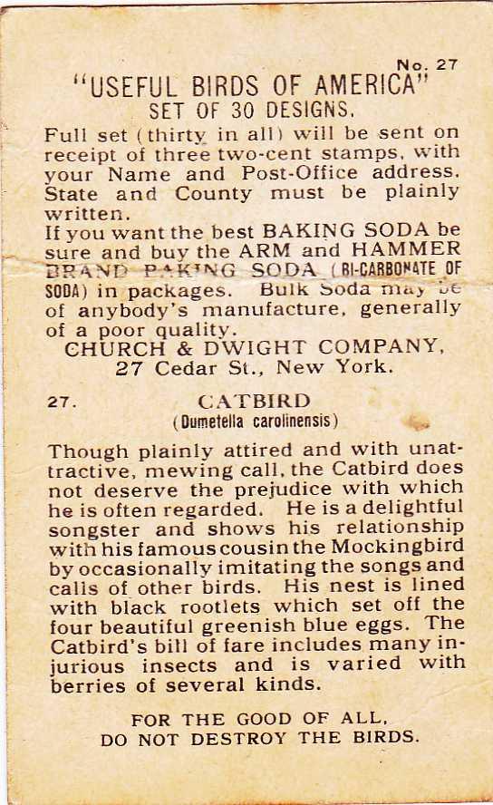 Arm & Hammer Trade Card - Catbird - Useful Birds 1918