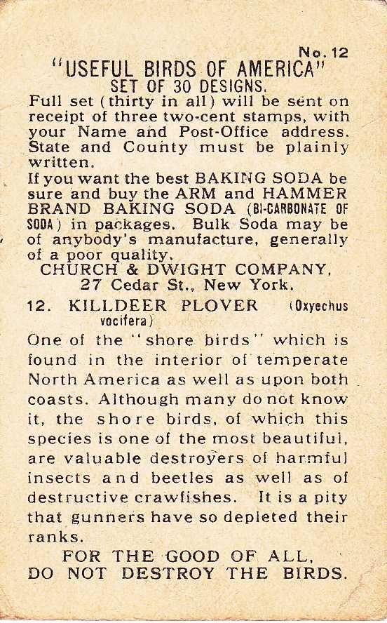 Arm & Hammer Trade Card - Killdeer - Useful Birds 1915