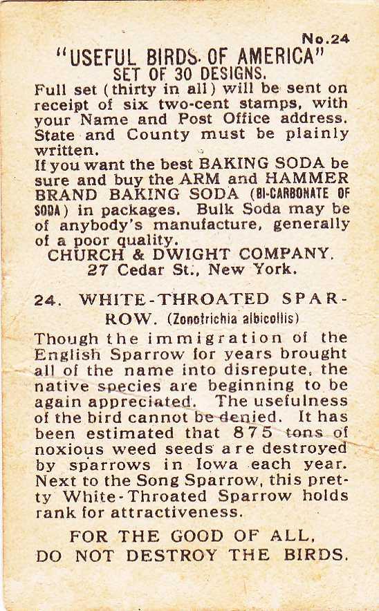 Arm & Hammer Trade Card - White-throated Sparrow - Useful Birds 1915