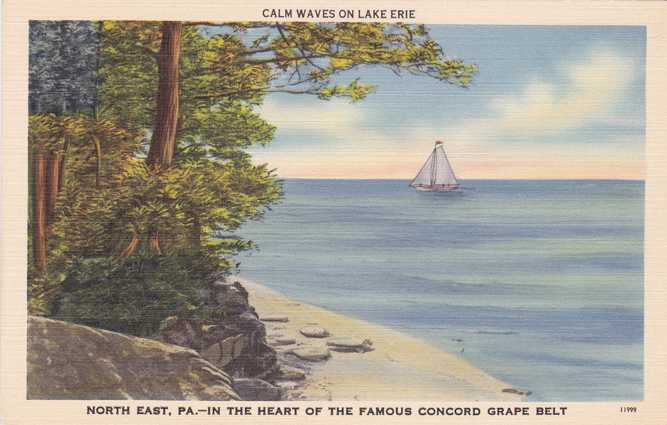 Buy Here Pay Here York Pa >> Playle's: Sailboat - Calm Waves on Lake Erie near North East, Pennsylvania - Linen Card - Store ...