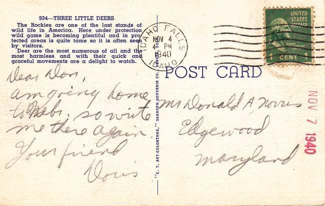 Rocky Mountain Deer - pm 1940 - Linen Card