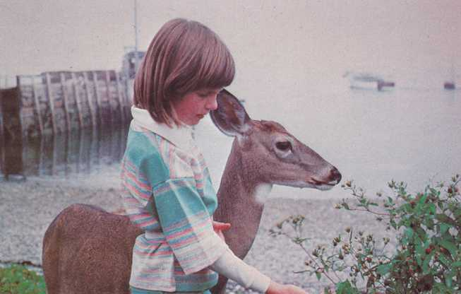 Animal Deer - Leslie Butler and her Woodland Friend